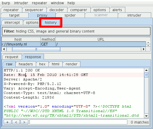 Viewing a request in Burp Proxy